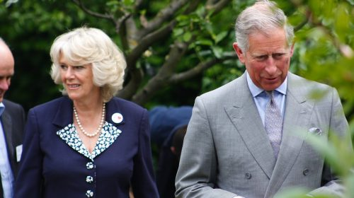Prince Charles tests positive for covid-19.Britain shocked !
